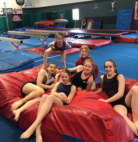 image - BV Gymnastics Association equipment revitalization 2019